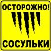 sosyli1.jpg